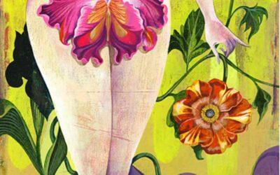 SOFTNESS. Dimensiunea pelvisului feminin.
